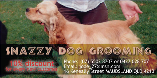 The pet directory australia worlds largest online pet directory snazzy dog grooming 10 discount for every new customer solutioingenieria Gallery