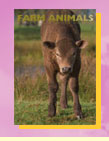 The Pet Directory Farm Animals Section
