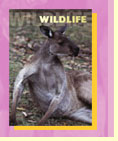 The Pet Directory Wildlife Section