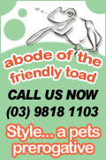 Abode of The Friendly Toad