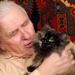 Retiring with Your Cat