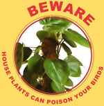 Poisonous Plants - Do Not Feed to Birds!