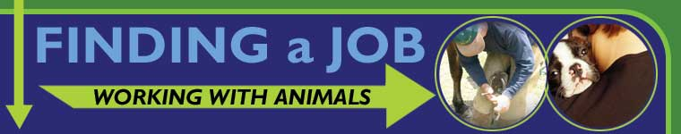 The Pet Directory Careers Article - Finding a Job