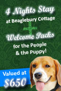 WIN 4 Nights Stay at Beaglebury Cottage With Welcome Packs for the People & the Puppy!