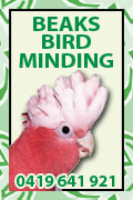 Beak Bird Minding 0419 641 921