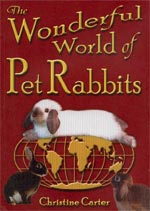 The Wonderful World of Pet Rabbits