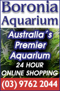 Boronia Aquariums
