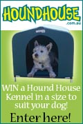 The Pet Directory Competition - HOUNDHOUSE