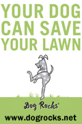 Dog Rocks - Let Your Dog Save Your Lawn