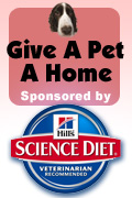 Give A Pet A Home Sponsored by Hill's Pet Nutrition