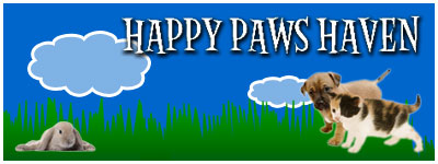 Happy Paws Haven Login