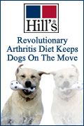Revolutionary Arthritis Diet Keeps Dogs on the Move