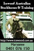 Icewood Australian Stockhorses & Training - Advertisement