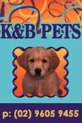 K and B Pets