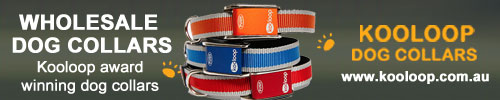 wholesale-dog-collars