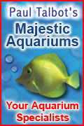Majestic Aquaium