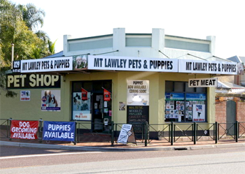 Mt Lawley Pets Puppies The Pet Directory