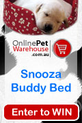 Win a Snooza Buddy Bed
