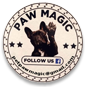 Paw Magic Automatic Dog Feeder
