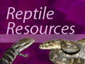 The Pet Directory - Reptile Resources: Information on Reptile Permits in Australia