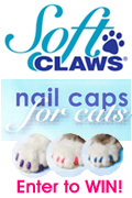Soft Claws Competition'