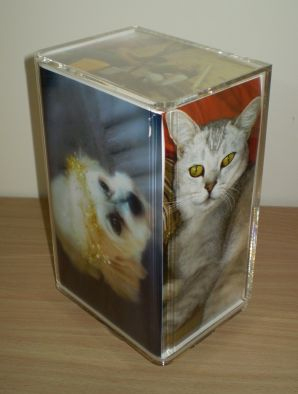 Pets In Heaven - Ash box