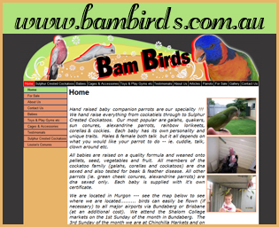 Bam Birds - Bird Breeder