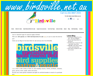 Birdsville - The Pet Bird Specialist