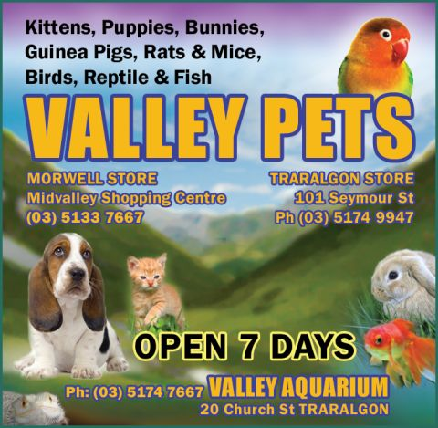 Valley Pets Pet Shop Morwell listing image or logo