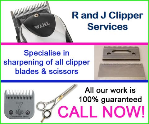 R AND J CLIPPER SERVICES logo