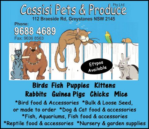 Cassisi Pets & Produce listing image or logo