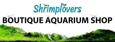 Shrimplovers logo