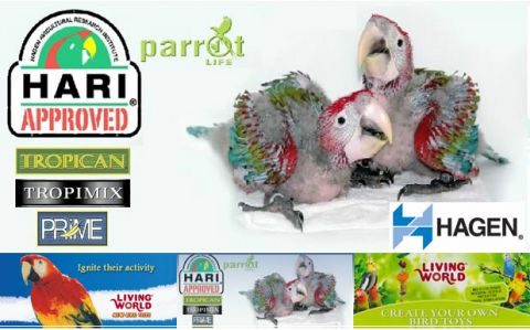 Pet Pacific Wholesale Bird Products listing image or logo