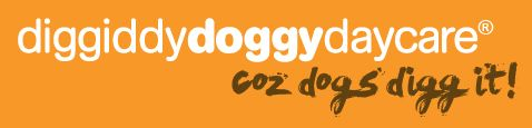 Diggiddy Doggy Daycare listing image or logo