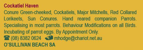 Cockatiel Haven listing image or logo