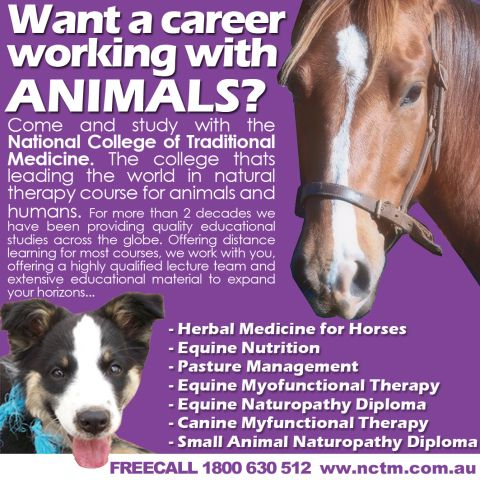 working with animals courses