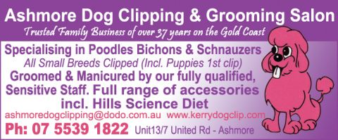 Ashmore Dog Clipping & Grooming Salon listing image or logo