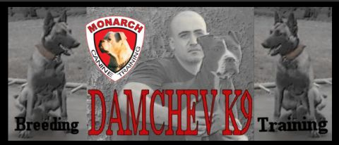 DamchevK9 - Monarch Canine Training listing image or logo