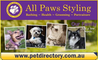 Pet Portraiture Photography services