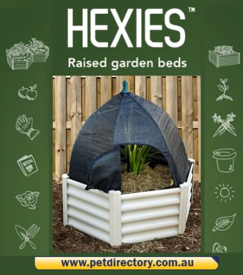 Hexies Shade Cloth