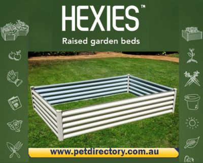 Rectangular Raised Garden Bed X-LGE