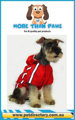 Reflective Red Dog Raincoat