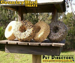 CountryBird Treats - Fresh Seed Treats for All Seed-Eating Birds