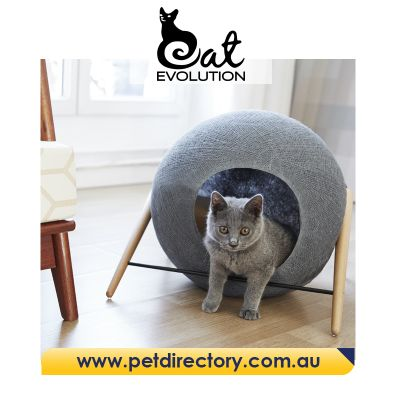 The Ball - MEYOU Unique Designer Cat Beds