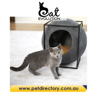 The Cube - MEYOU Unique Designer Cat Bed