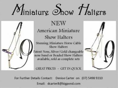 AMERICAN MINIATURE SHOW HALTERS