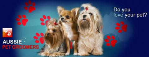 Dog Grooming Rochedale